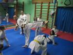Ukážka nácviku Yeop chagi